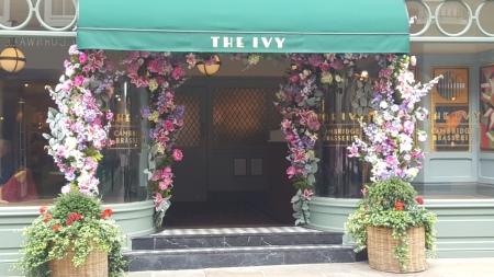 Ivy 4